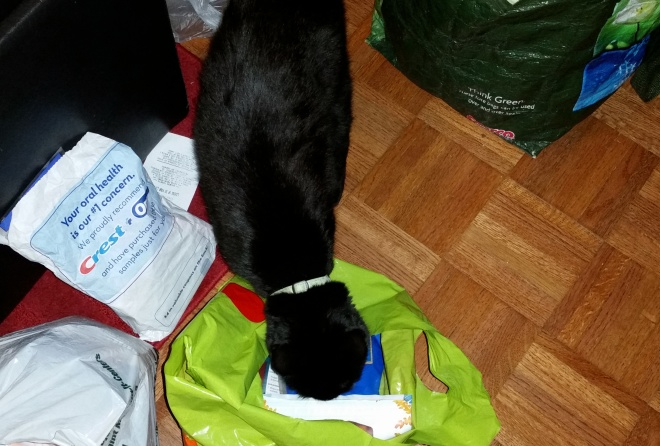 Lilo inspects the garbage harvest