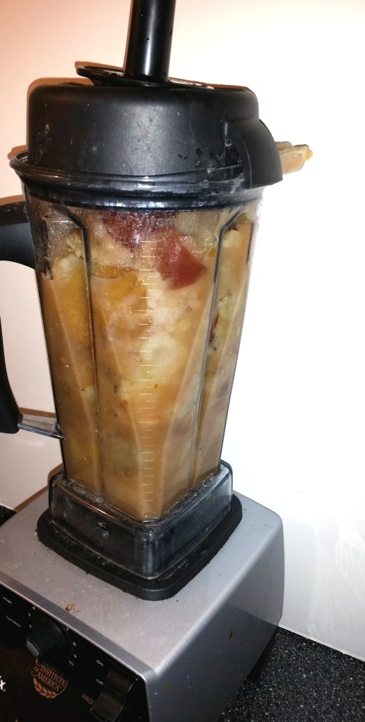 cooked applies in vitamix blender for applesauce